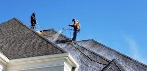 membrane application to rejuvenate shingle roof