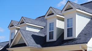 Shingle Roof Repair & Rejuvenation Company